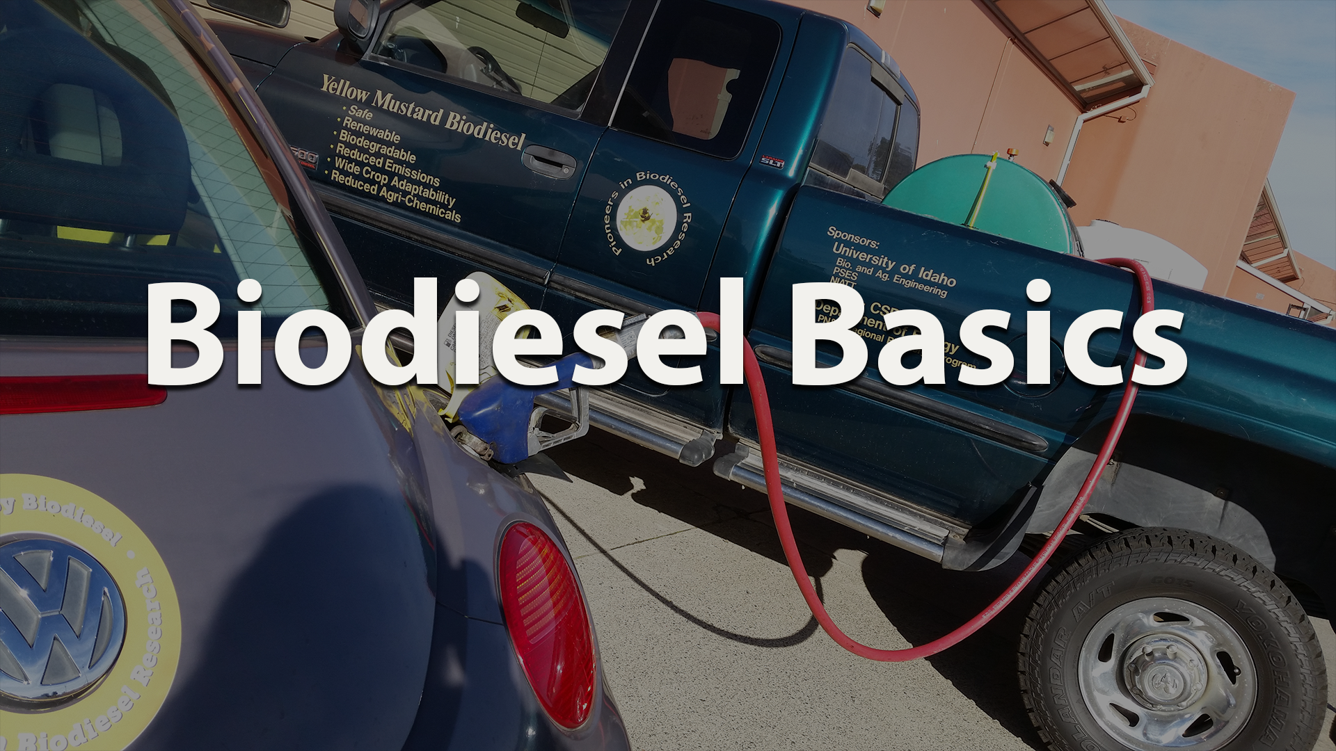 What if Biodiesel