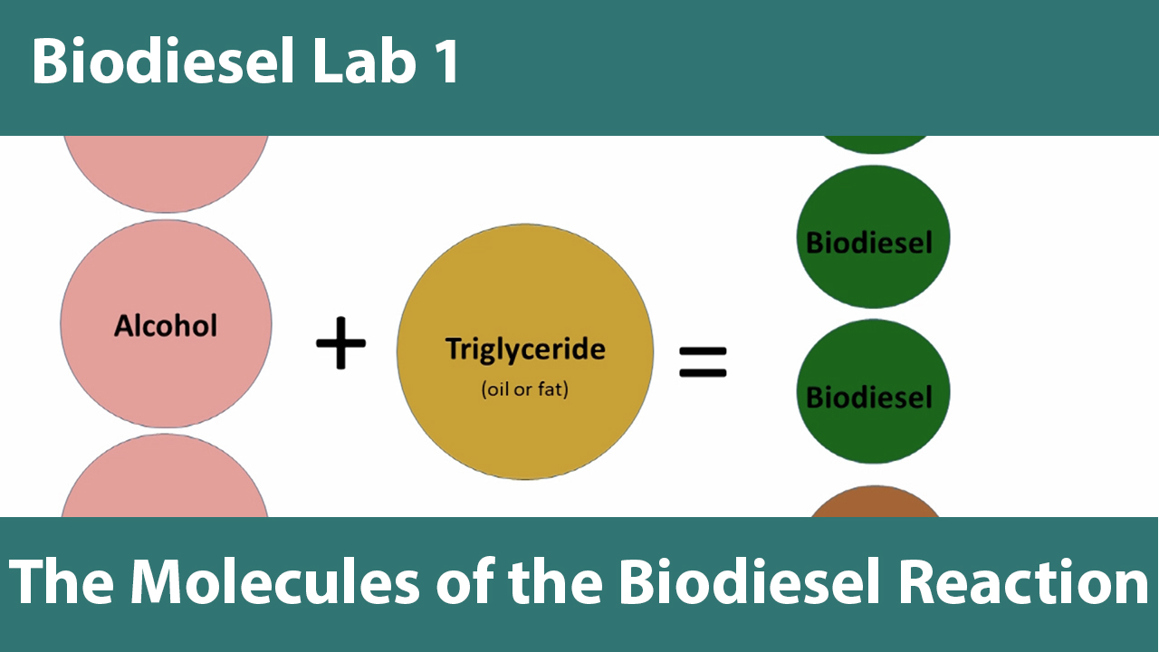 Biodiesel Education at the University of Idaho