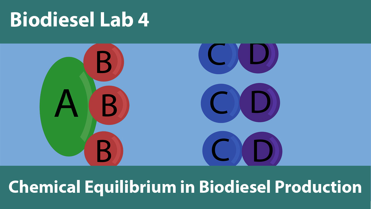 Lab 4: Chemical Equilibrium in Biodiesel Production