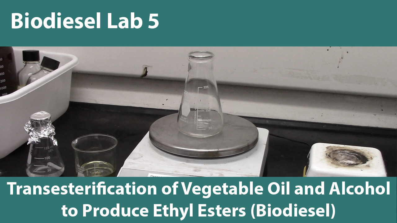 Lab 5: Transesterification of Vegetable Oil and Alcohol to Produce Ethyl Esters (Biodiesel)